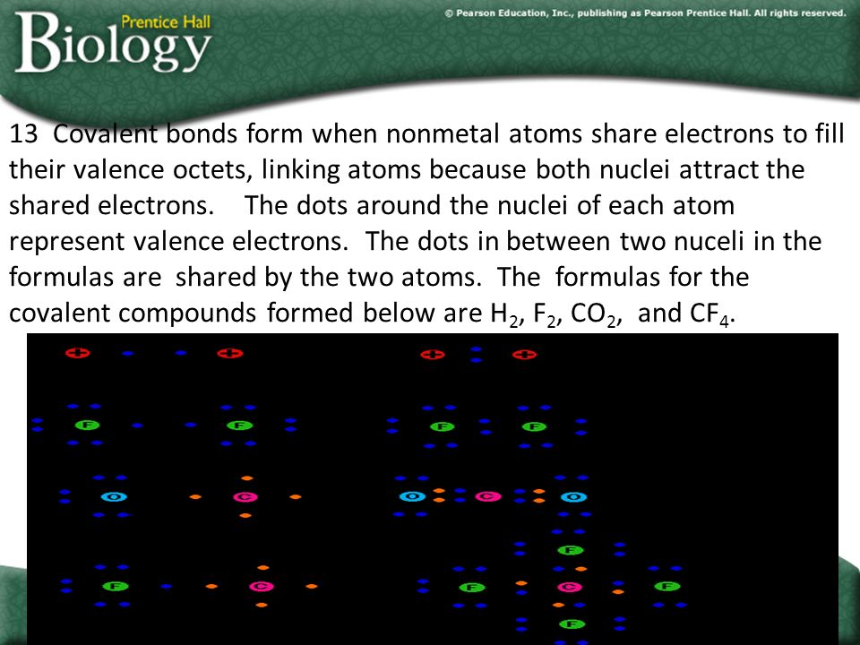Go to Section: 13 Covalent bonds form when nonmetal atoms share electrons to fill their valence octets, linking atoms because both nuclei attract the shared electrons.