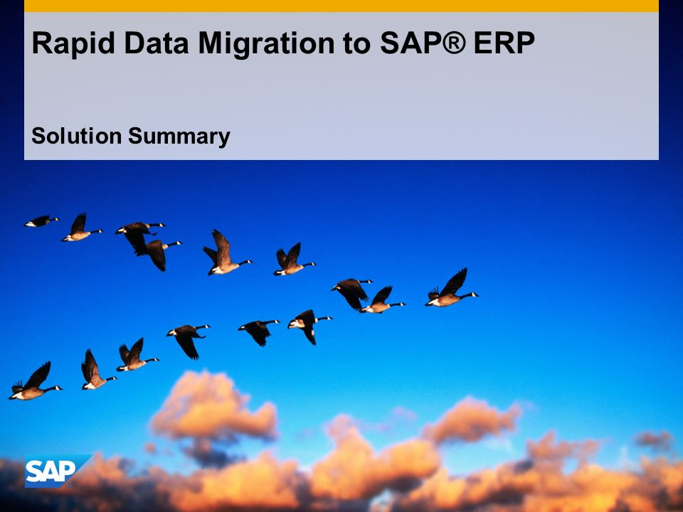 Solution Summary Rapid Data Migration to SAP® ERP