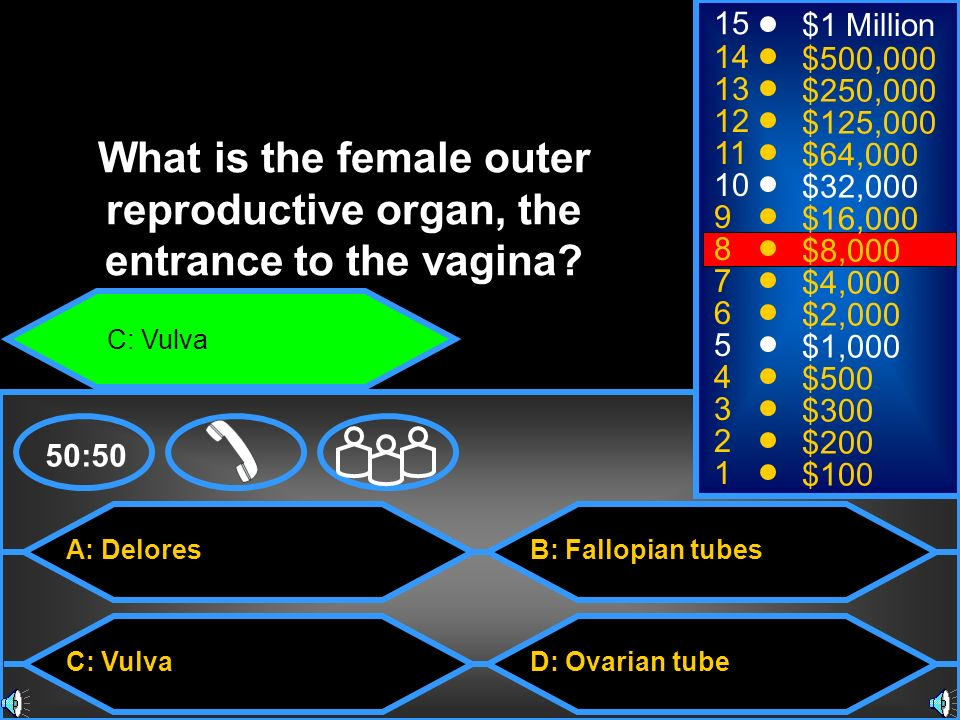 A: Delores C: Vulva B: Fallopian tubes D: Ovarian tube 50: $1 Million $500,000 $250,000 $125,000 $64,000 $32,000 $16,000 $8,000 $4,000 $2,000 $1,000 $500 $300 $200 $100 What is the female outer reproductive organ, the entrance to the vagina.