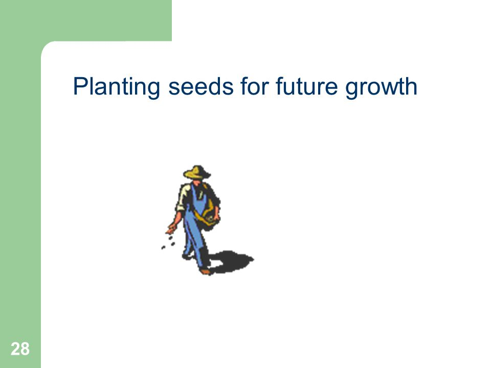 28 Planting seeds for future growth