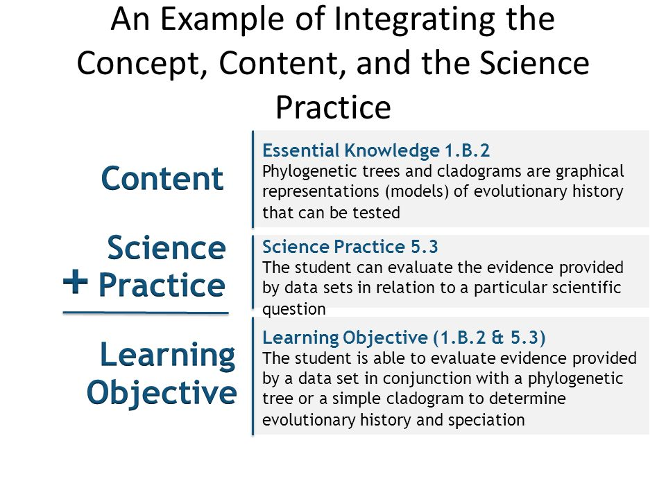 An Example of Integrating the Concept, Content, and the Science Practice Science Practice 5.3 The student can evaluate the evidence provided by data sets in relation to a particular scientific question Learning Objective (1.B.2 & 5.3) The student is able to evaluate evidence provided by a data set in conjunction with a phylogenetic tree or a simple cladogram to determine evolutionary history and speciation Essential Knowledge 1.B.2 Phylogenetic trees and cladograms are graphical representations (models) of evolutionary history that can be tested