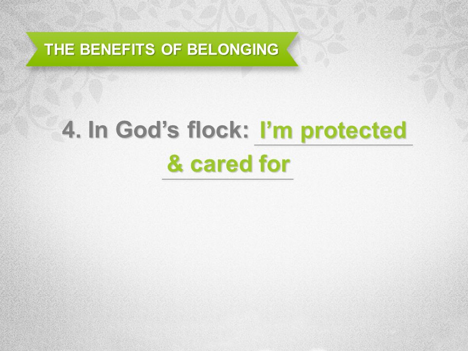 THE BENEFITS OF BELONGING 4. In Gods flock: Im protected & cared for