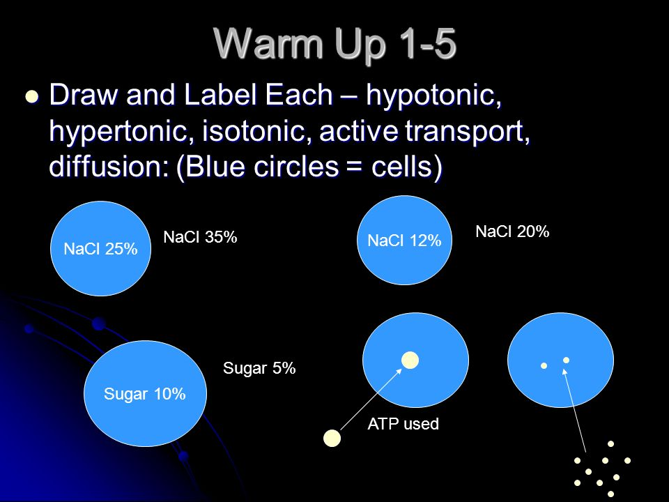 Warm Up 1-5 Draw and Label Each – hypotonic, hypertonic, isotonic, active transport, diffusion: (Blue circles = cells) Draw and Label Each – hypotonic, hypertonic, isotonic, active transport, diffusion: (Blue circles = cells) NaCl 25% NaCl 12% Sugar 10% NaCl 35% Sugar 5% NaCl 20% ATP used