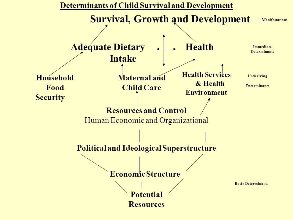 Determinants of Child Survival and Development Survival, Growth and Development Adequate Dietary Health Intake Household Food Security Maternal and Child Care Health Services & Health Environment Resources and Control Human Economic and Organizational Political and Ideological Superstructure Economic Structure Potential Resources Underlying Determinants Basic Determinants Manifestations Immediate Determinants