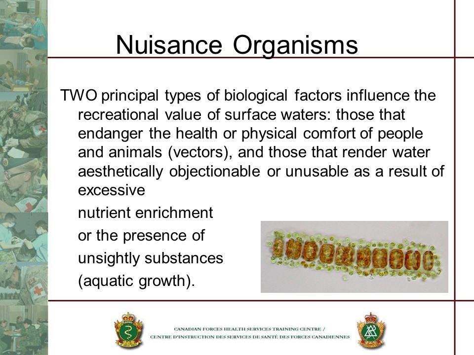 Nuisance Organisms TWO principal types of biological factors influence the recreational value of surface waters: those that endanger the health or physical comfort of people and animals (vectors), and those that render water aesthetically objectionable or unusable as a result of excessive nutrient enrichment or the presence of unsightly substances (aquatic growth).