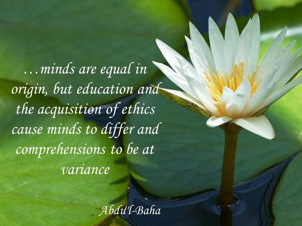 …minds are equal in origin, but education and the acquisition of ethics cause minds to differ and comprehensions to be at variance Abdu l-Baha