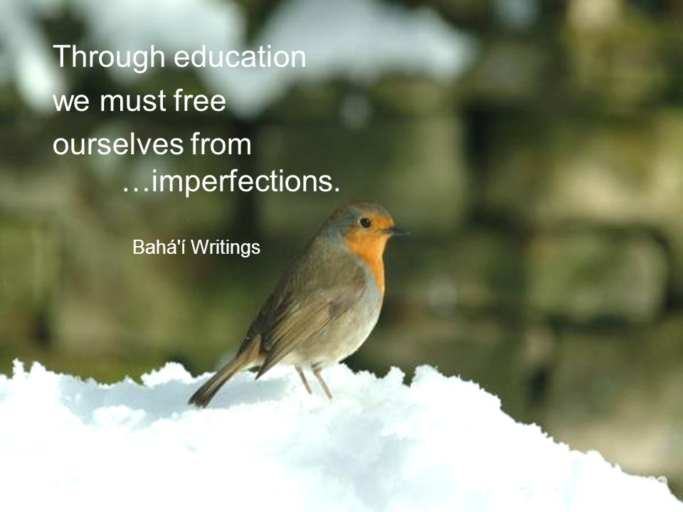 Through education we must free ourselves from …imperfections. Bahá í Writings