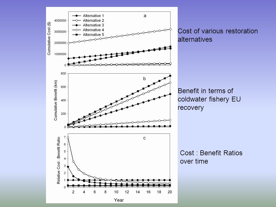 Cost of various restoration alternatives Benefit in terms of coldwater fishery EU recovery Cost : Benefit Ratios over time