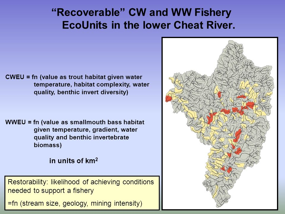 Recoverable CW and WW Fishery EcoUnits in the lower Cheat River.