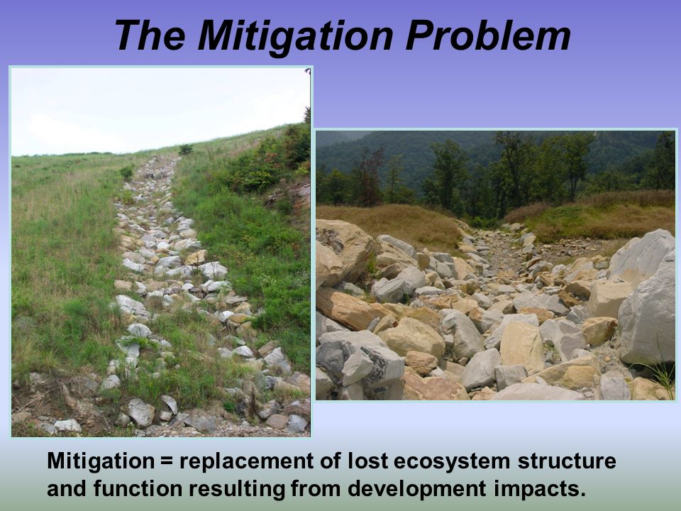 Mitigation = replacement of lost ecosystem structure and function resulting from development impacts.
