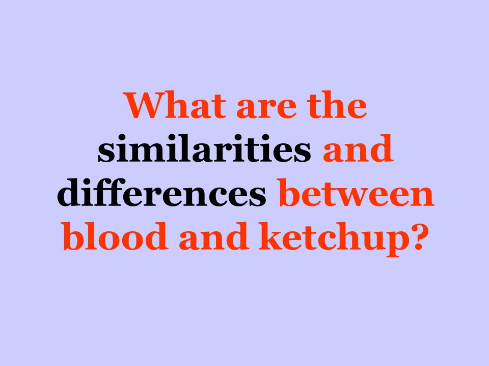 What are the similarities and differences between blood and ketchup