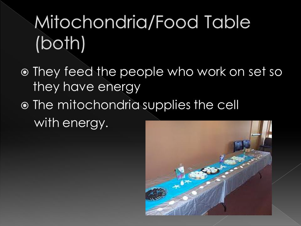 They feed the people who work on set so they have energy The mitochondria supplies the cell with energy.