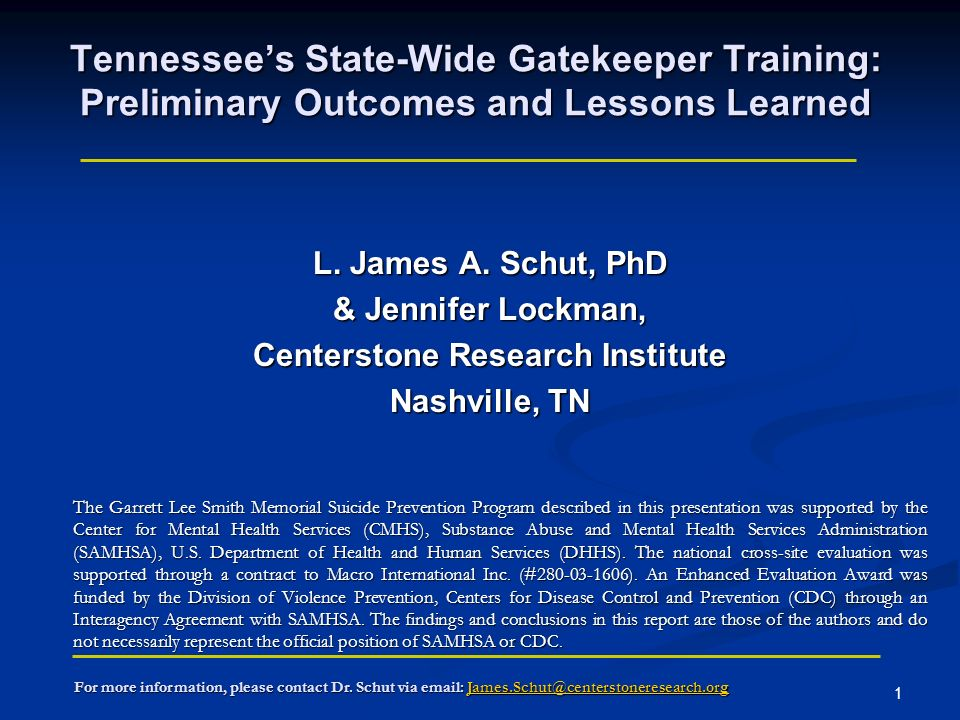 1 Tennessees State-Wide Gatekeeper Training: Preliminary Outcomes and Lessons Learned L.