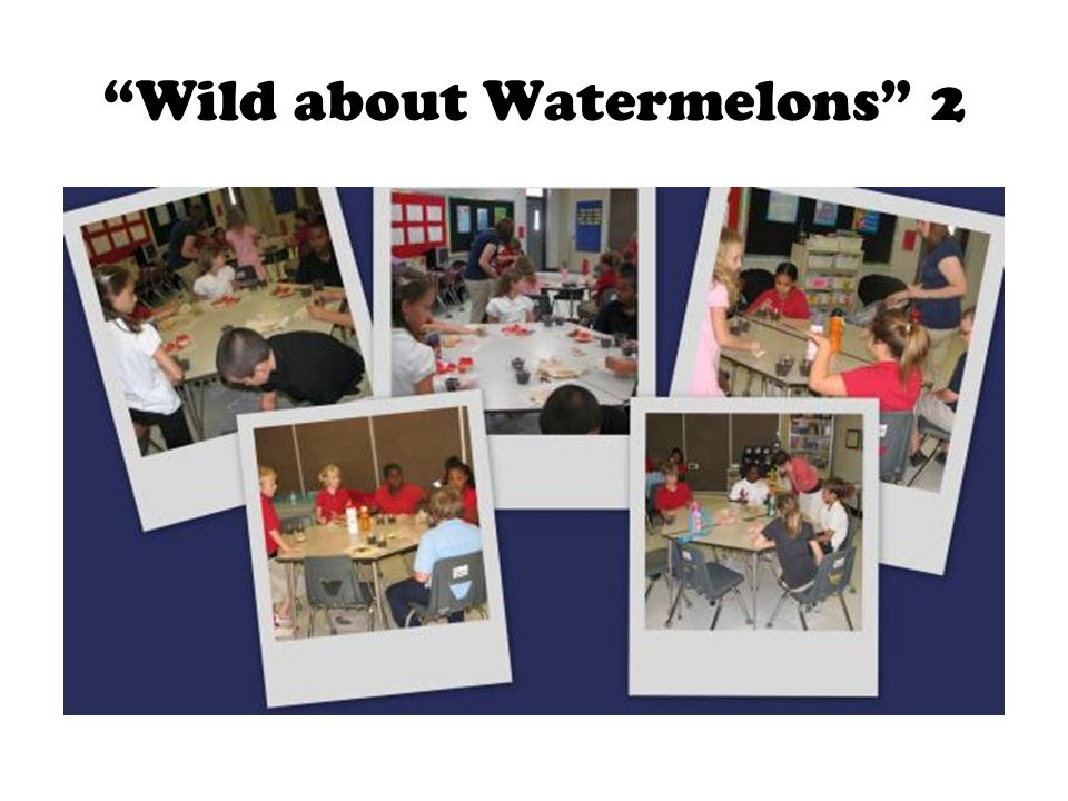 Wild about Watermelons 2