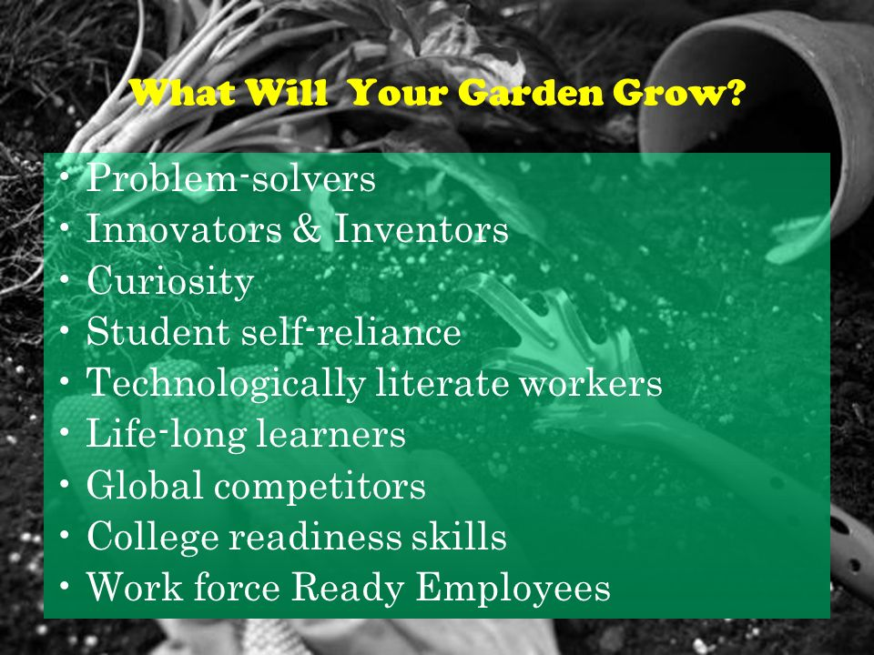 What Will Your Garden Grow.