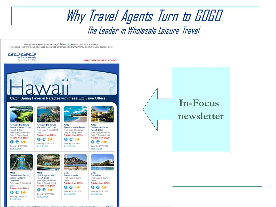 In-Focus newsletter Why Travel Agents Turn to GOGO The Leader in Wholesale Leisure Travel