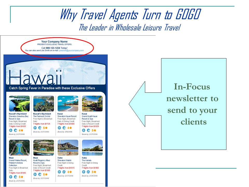 In-Focus newsletter to send to your clients Why Travel Agents Turn to GOGO The Leader in Wholesale Leisure Travel