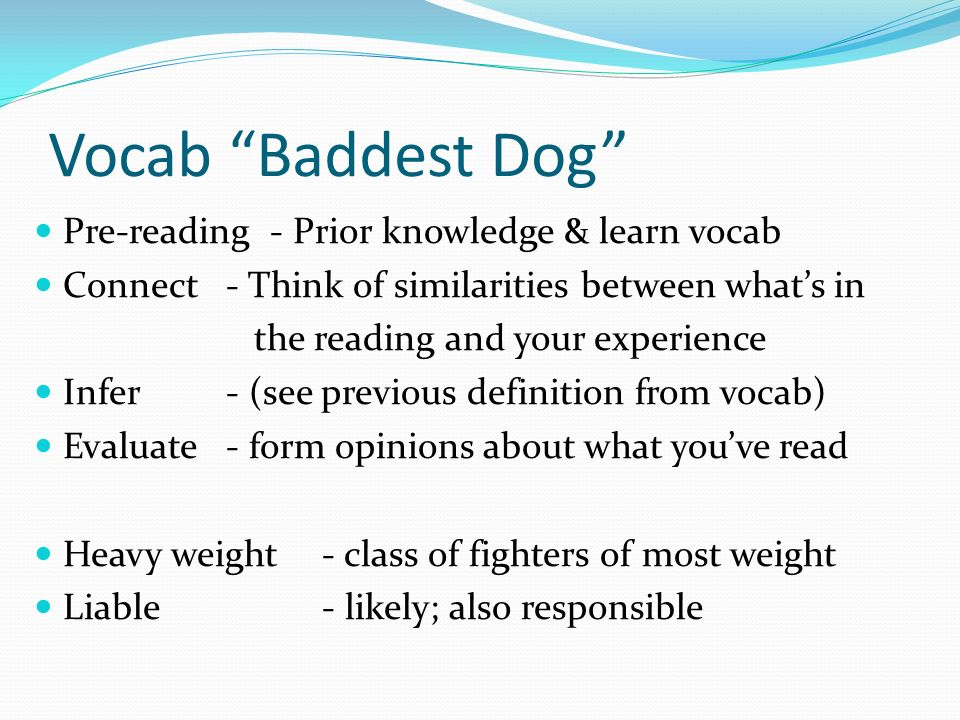 Vocab Baddest Dog Pre-reading - Prior knowledge & learn vocab Connect- Think of similarities between whats in the reading and your experience Infer- (see previous definition from vocab) Evaluate- form opinions about what youve read Heavy weight- class of fighters of most weight Liable- likely; also responsible