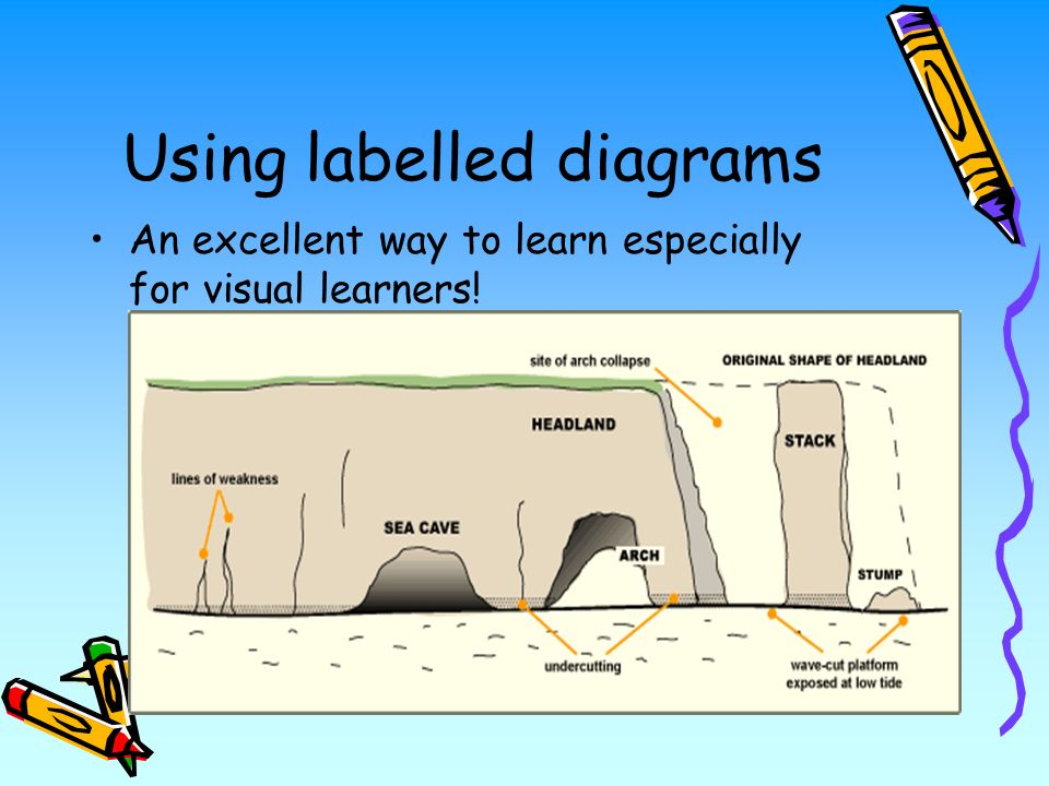 Using labelled diagrams An excellent way to learn especially for visual learners!