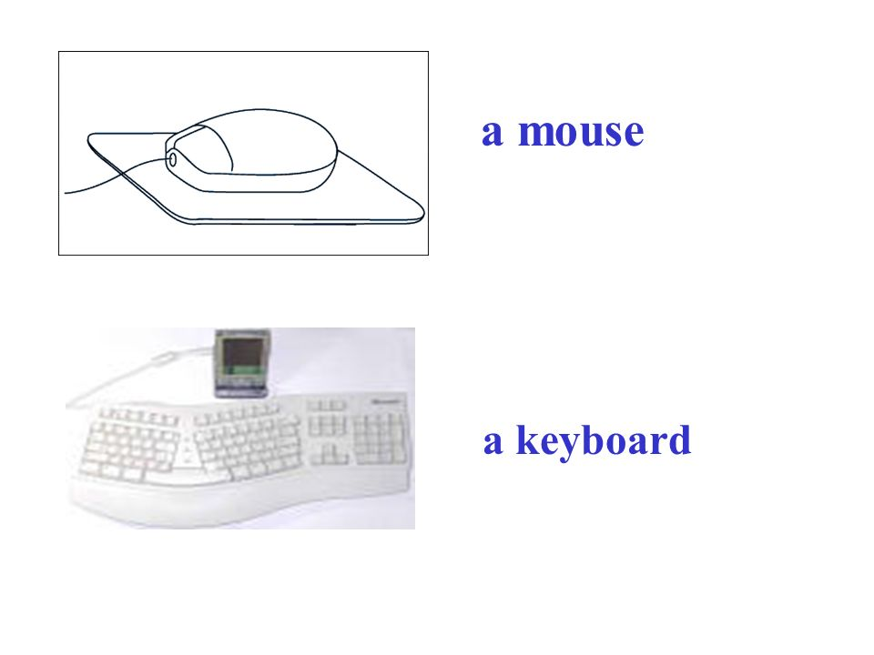 a mouse a keyboard