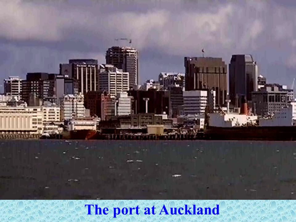 The port at Auckland