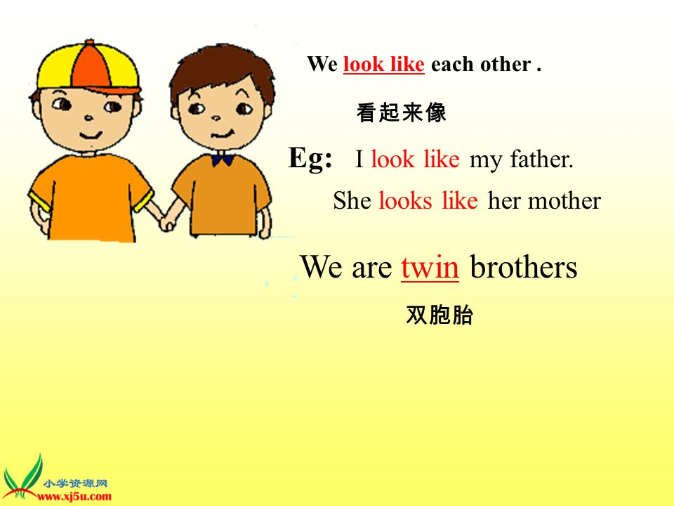 We are twin brothers Eg: I look like my father. She looks like her mother We look like each other.