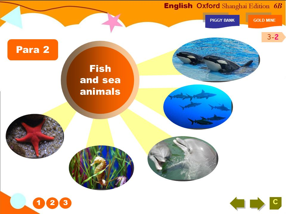 Look and write PIGGY BANKGOLD MINE C Look at the following pictures and write something about the oceans.