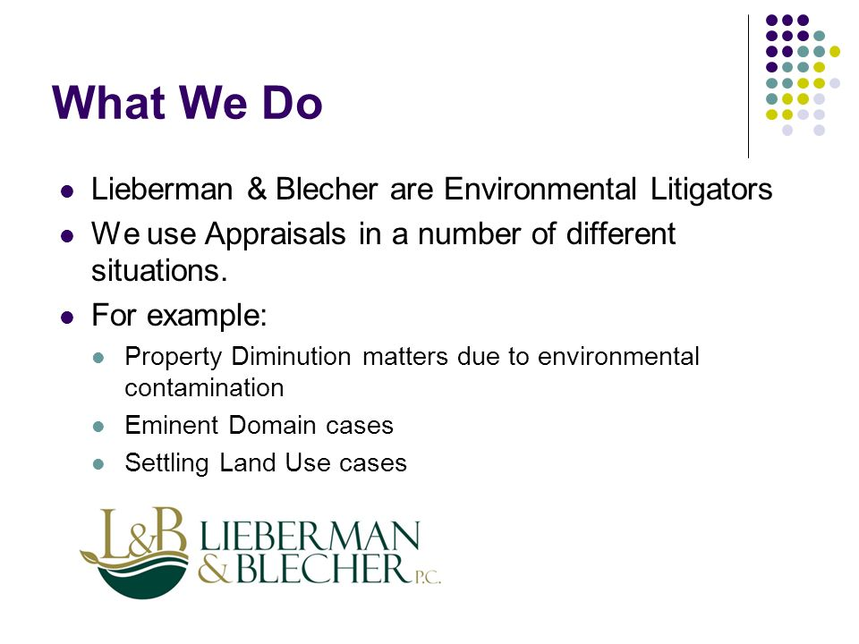 What We Do Lieberman & Blecher are Environmental Litigators We use Appraisals in a number of different situations.
