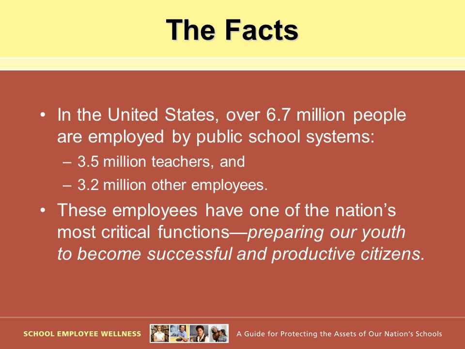 The Facts In the United States, over 6.7 million people are employed by public school systems: –3.5 million teachers, and –3.2 million other employees.