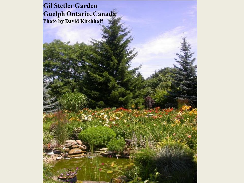 Gil Stetler Garden Guelph Ontario, Canada Photo by David Kirchhoff