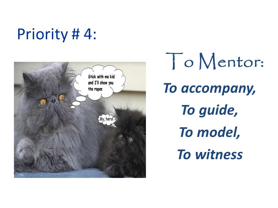 To Mentor: To accompany, To guide, To model, To witness Priority # 4: