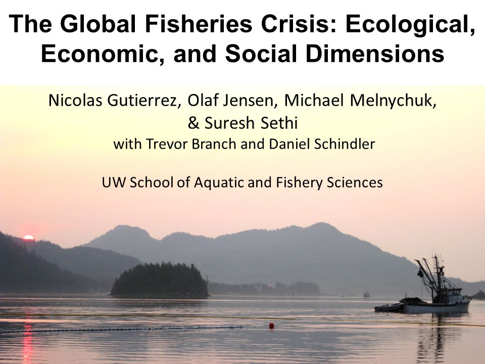 Nicolas Gutierrez, Olaf Jensen, Michael Melnychuk, & Suresh Sethi with Trevor Branch and Daniel Schindler UW School of Aquatic and Fishery Sciences The Global Fisheries Crisis: Ecological, Economic, and Social Dimensions