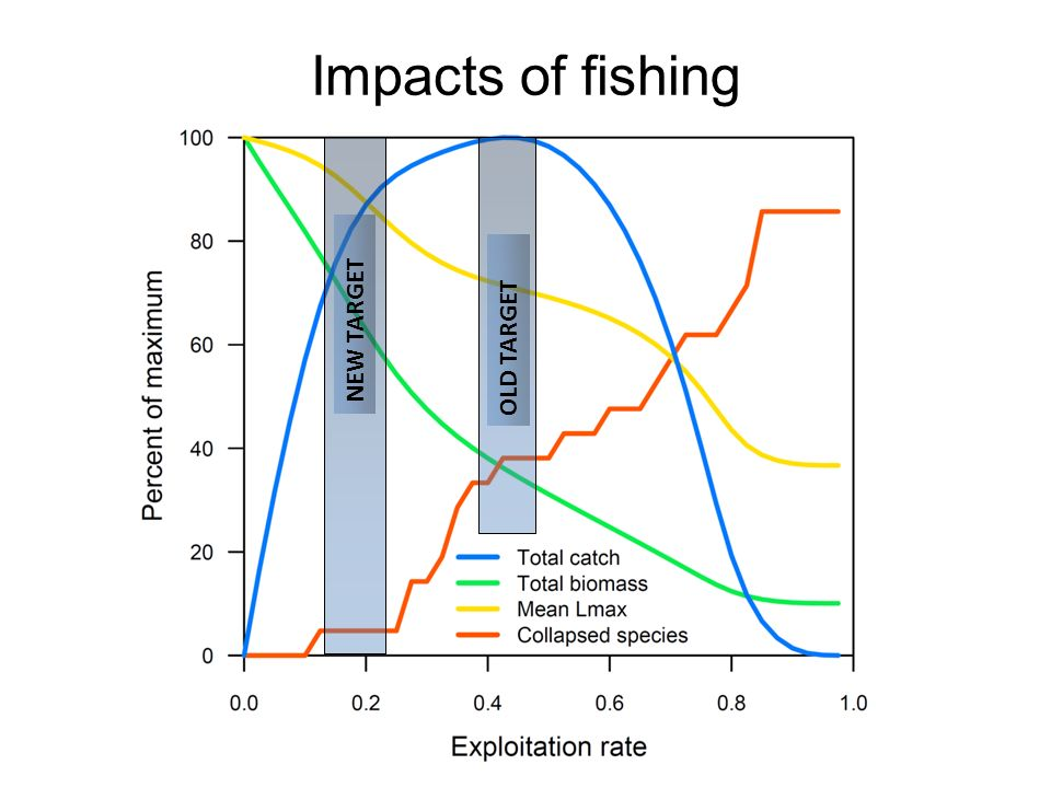 OLD TARGET NEW TARGET Impacts of fishing