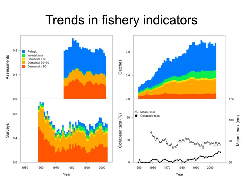 Trends in fishery indicators