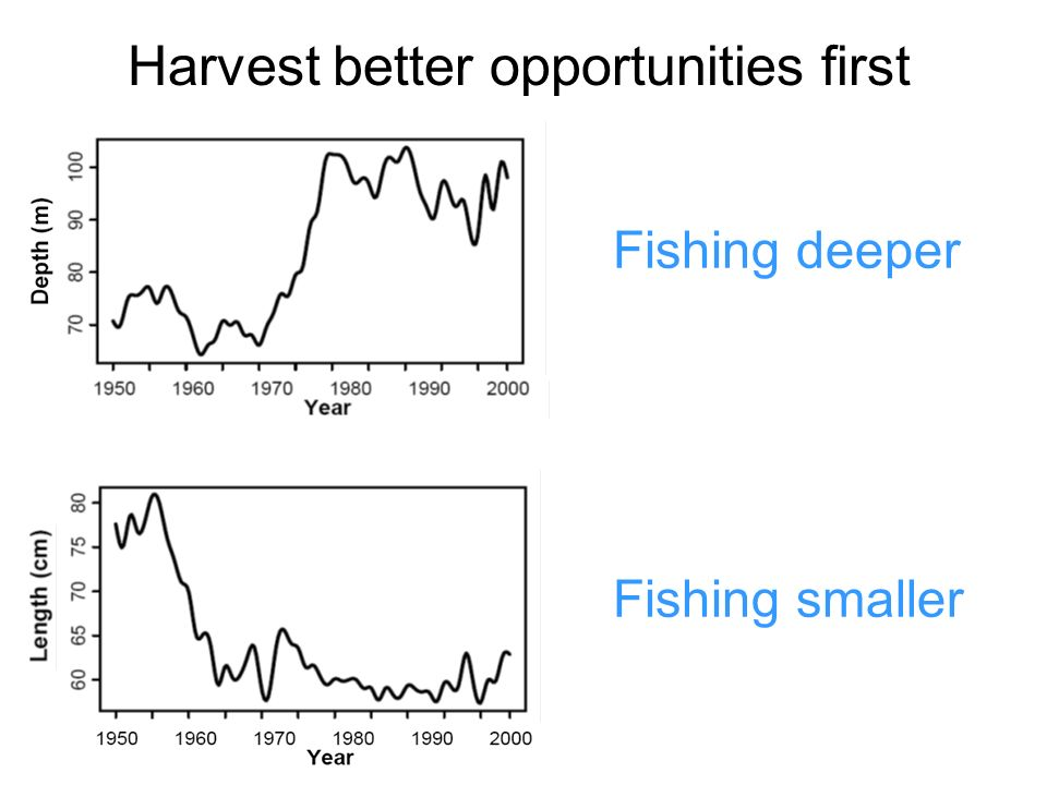 Fishing deeper Fishing smaller Harvest better opportunities first