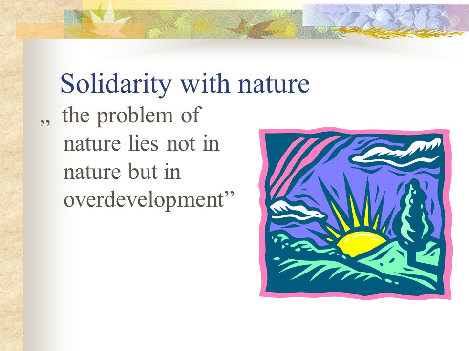 Solidarity with nature the problem of nature lies not in nature but in overdevelopment