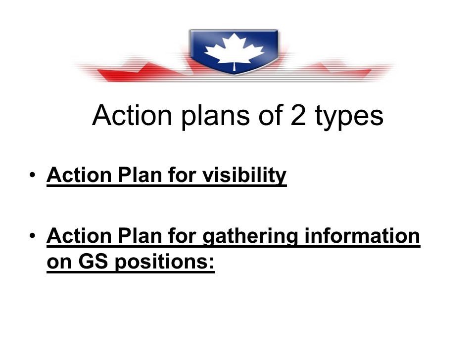 Action plans of 2 types Action Plan for visibility Action Plan for gathering information on GS positions:
