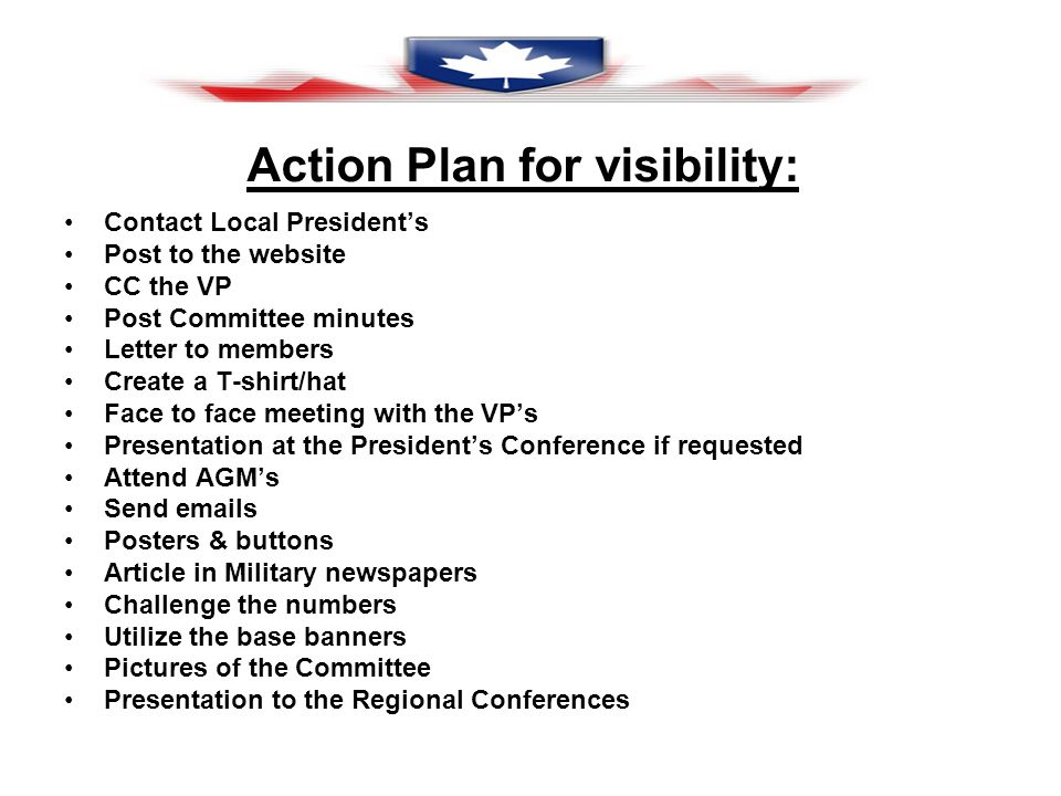 Action Plan for visibility: Contact Local Presidents Post to the website CC the VP Post Committee minutes Letter to members Create a T-shirt/hat Face to face meeting with the VPs Presentation at the Presidents Conference if requested Attend AGMs Send emails Posters & buttons Article in Military newspapers Challenge the numbers Utilize the base banners Pictures of the Committee Presentation to the Regional Conferences