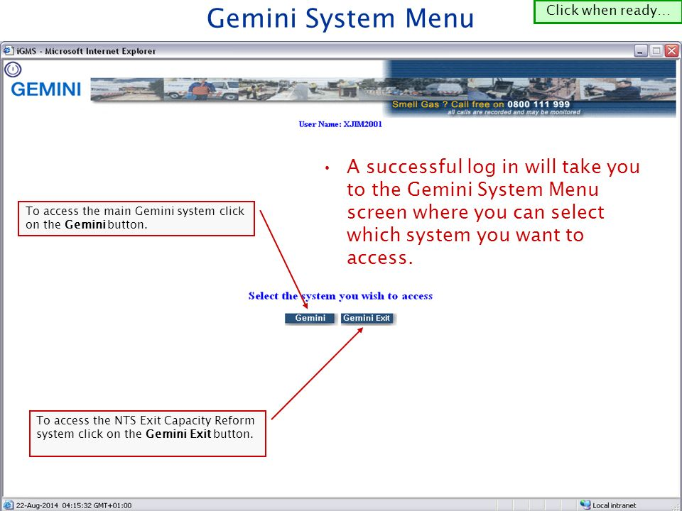To access the main Gemini system click on the Gemini button.