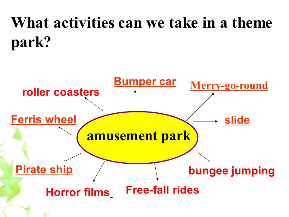 What activities can we take in a theme park.