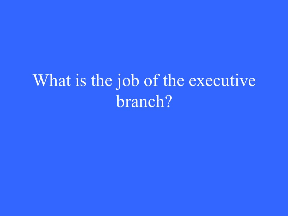 What is the job of the executive branch