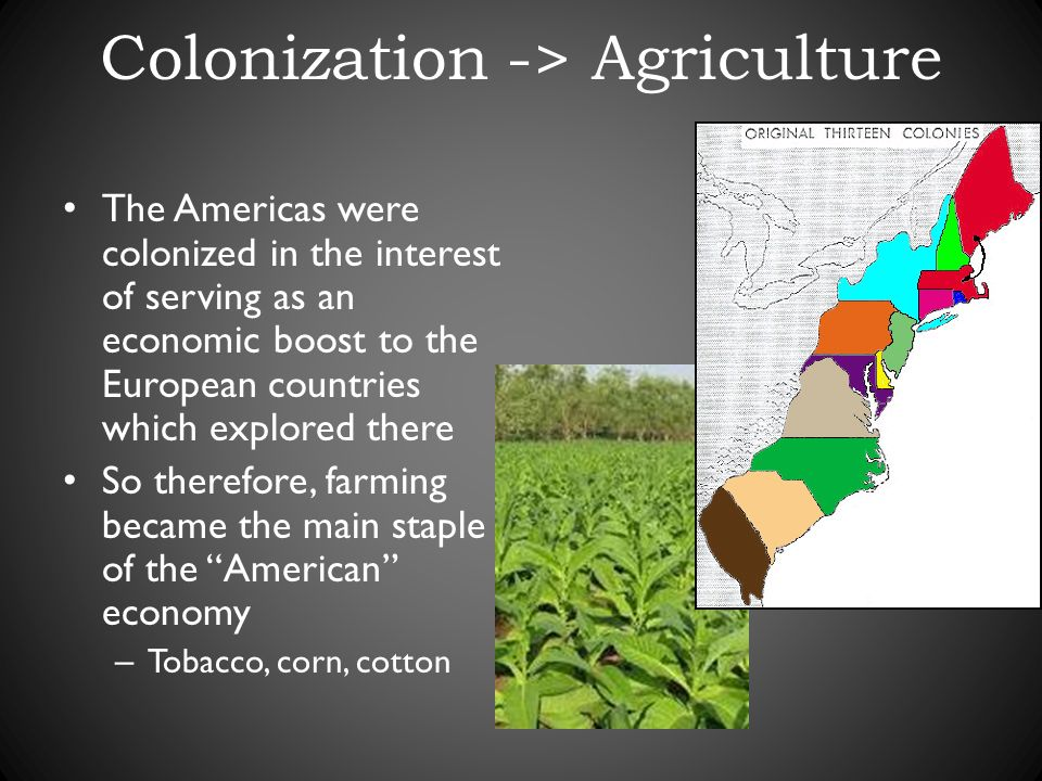 Colonization -> Agriculture The Americas were colonized in the interest of serving as an economic boost to the European countries which explored there So therefore, farming became the main staple of the American economy – Tobacco, corn, cotton