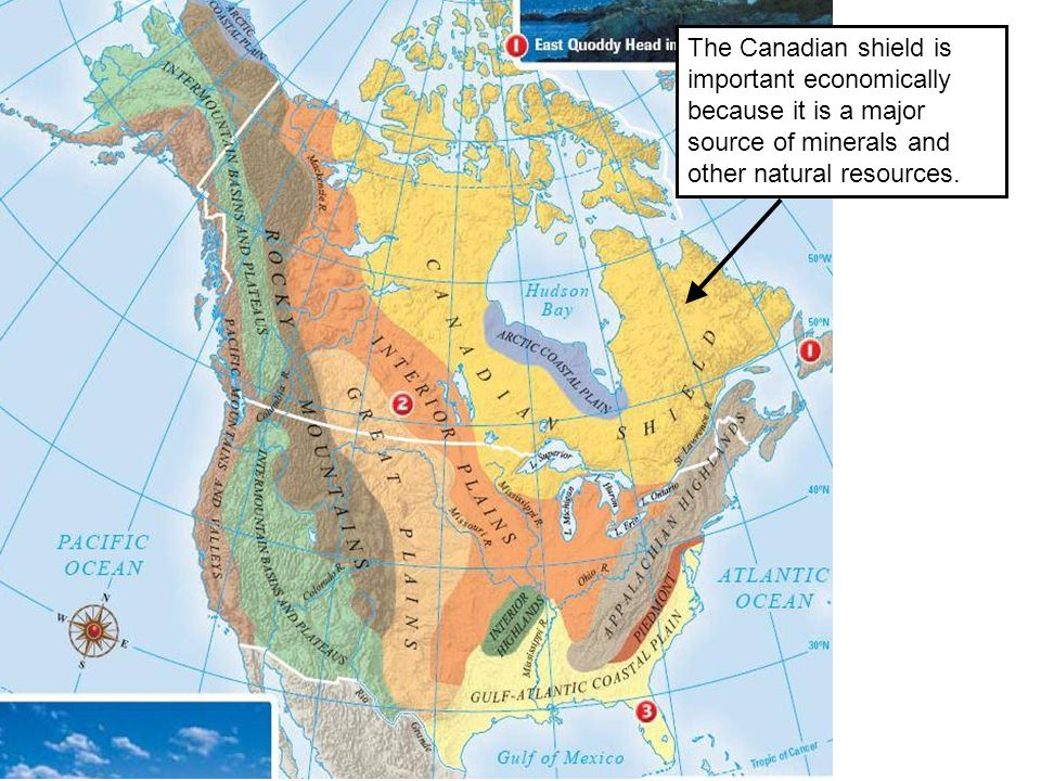 The Canadian shield is important economically because it is a major source of minerals and other natural resources.