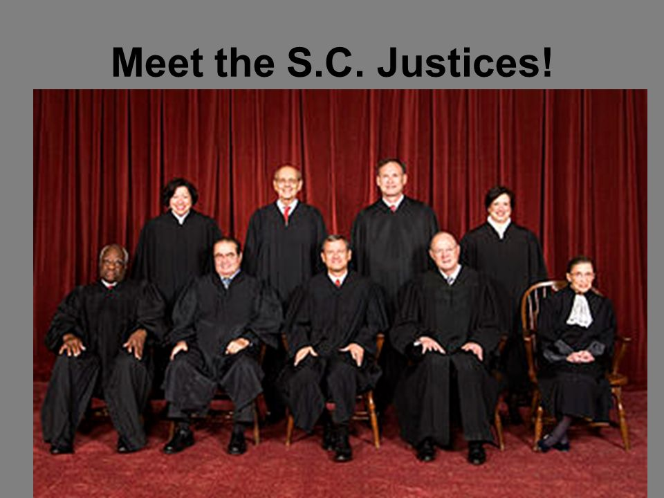 Meet the S.C. Justices!