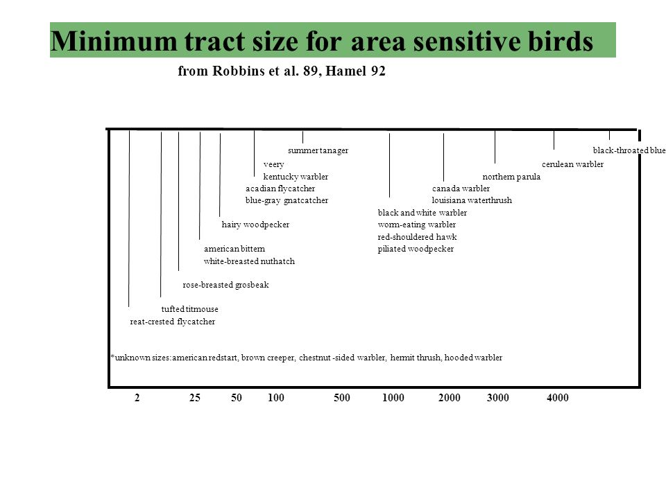 Minimum tract size for area sensitive birds from Robbins et al.