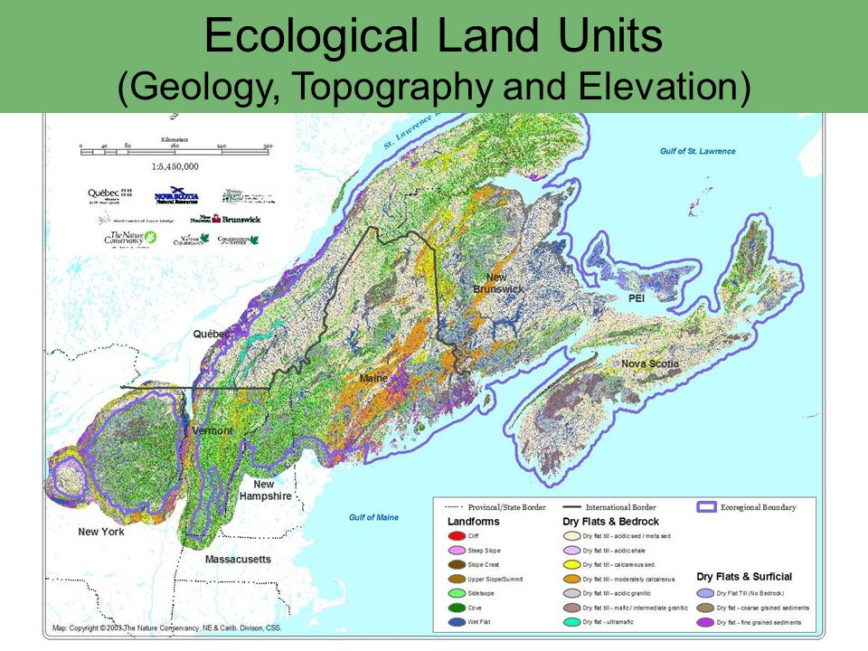 Ecological Land Units (Geology, Topography and Elevation)