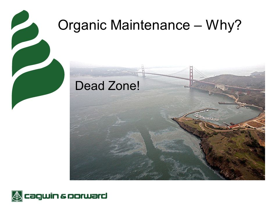 Organic Maintenance – Why Dead Zone!