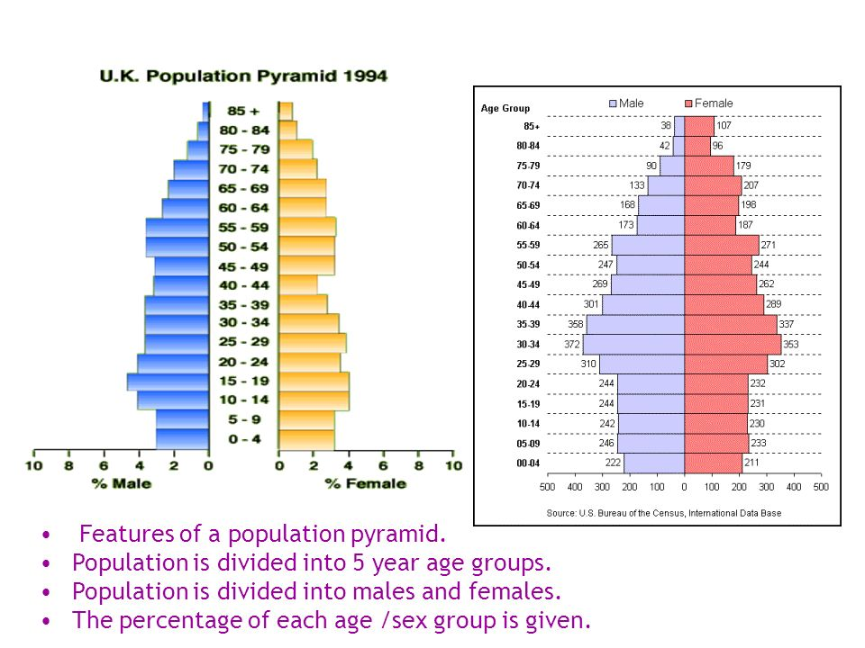 Features of a population pyramid. Population is divided into 5 year age groups.