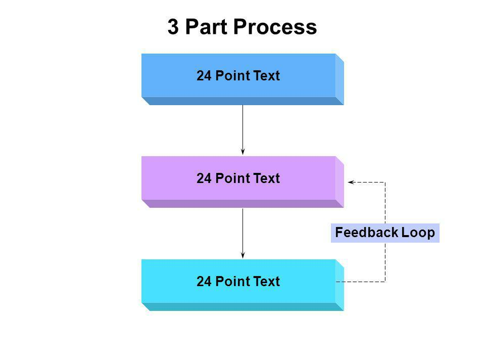 3 Part Process 24 Point Text Feedback Loop