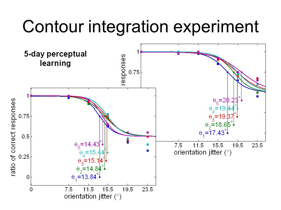 Contour integration experiment 5-day perceptual learning